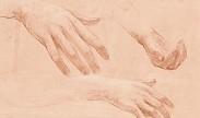 handen / hands