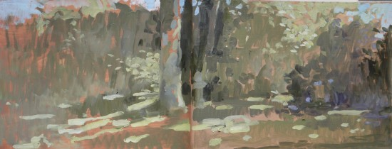 garden study, sketchbook-