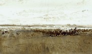 landschap in Zeeland / landscape