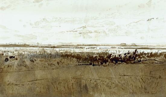 landschap in Zeeland
