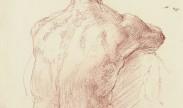 mannelijk naakt / male nude