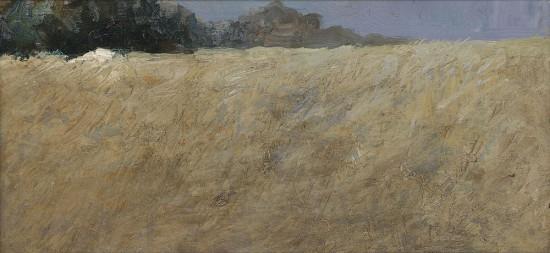 landscape in Gaasterland